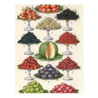 Cartão Postal Fruta Assorted alimentos do vintage em bandejas