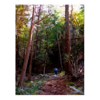 Cartão Postal Fugas pretas da rocha, parque estadual de