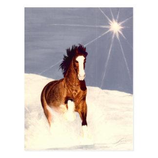 Cartão Postal Funcionamento da luz das estrelas