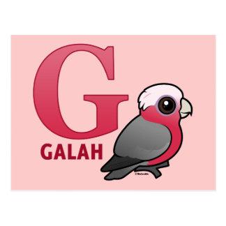 Cartão Postal G é para Galah