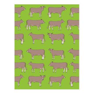 Cartão Postal gado marrom