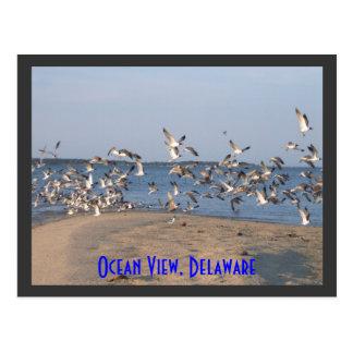 Cartão Postal Gaivotas cartão, vista para o mar, Delaware