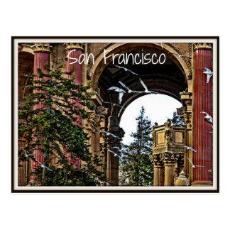 Cartão Postal Gaivotas de San Francisco
