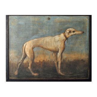 Cartão Postal Galgo por Giovanni Domenico Tiepolo