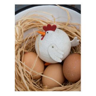 Cartão Postal Galinha & ovos