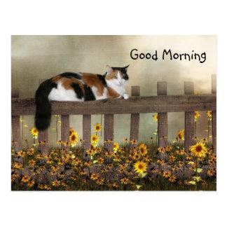 Cartão Postal Gatinho da chita do bom dia