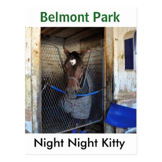 Cartão Postal Gatinho da noite da noite