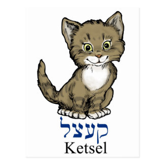 "Cartão Postal gatinho pequeno bonito ""ketsel"" no Yiddish"