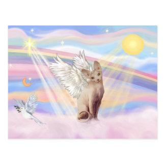 Cartão Postal Gato 1 de Sphynx - nuvens
