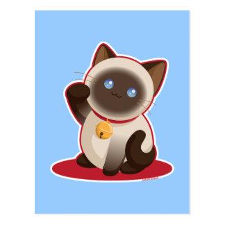 Cartão Postal Gato afortunado