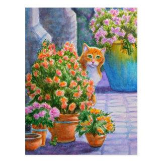 Cartão Postal Gato alaranjado com potes de flor