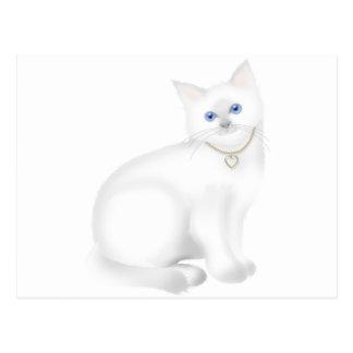 Cartão Postal Gato branco bonito do gatinho do gatinho