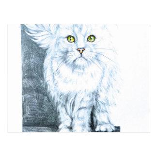 Cartão Postal Gato branco bonito na cadeira