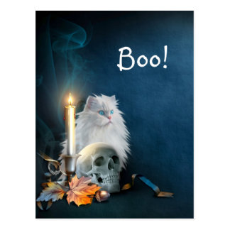 Cartão Postal Gato branco do Dia das Bruxas