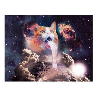 Cartão Postal gato da cachoeira - fonte do gato - espace o gato