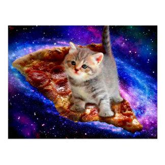 Cartão Postal gato da pizza - gatos bonitos - gatinho - gatinhos