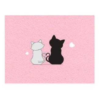 Cartão Postal Gato de afago bonito