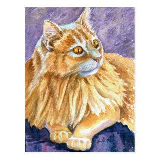 Cartão Postal Gato de creme do angora