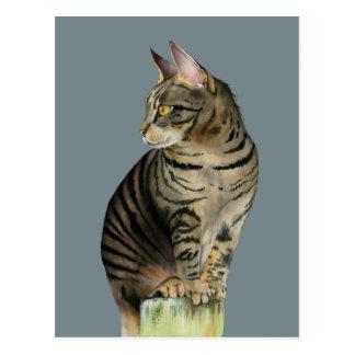 """Cartão Postal """"Gato de gato malhado da vigia"""" na ilustração de"""