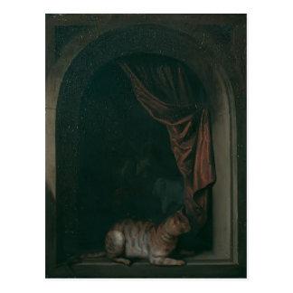 Cartão Postal Gato de Gerrit Dou A na janela dos estúdios de uns