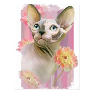 Cartão Postal Gato de Sphynx