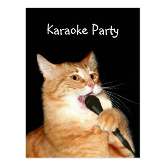 Cartão Postal Gato do canto