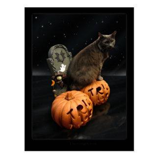 Cartão Postal Gato do Dia das Bruxas