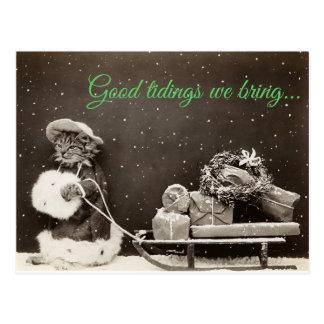 Cartão Postal Gato do Natal