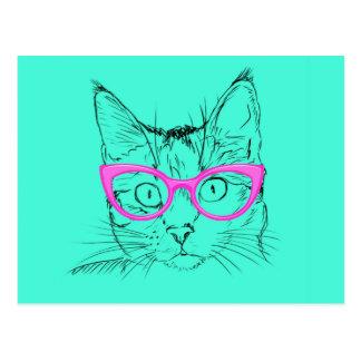 Cartão Postal Gato inteligente
