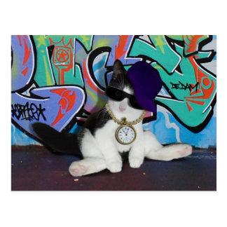 Cartão Postal Gato-itude da atitude do gato .......!