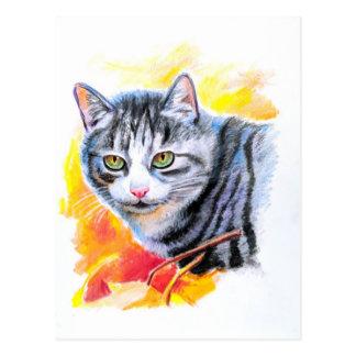 Cartão Postal Gato listrado cinzento