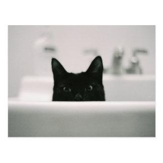 Cartão Postal Gato preto no dissipador