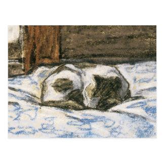 Cartão Postal Gato que dorme em uma cama por Claude Monet