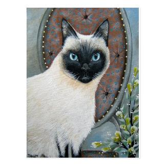 Cartão Postal Gato Siamese