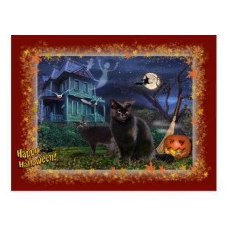 Cartão Postal Gatos do Dia das Bruxas