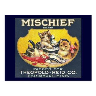 Cartão Postal Gatos dos gatinhos da etiqueta de marca do