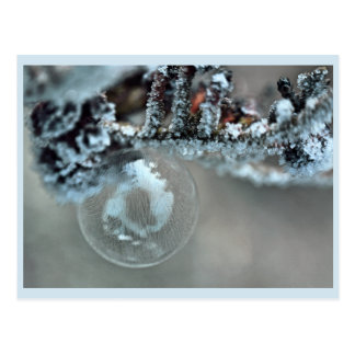 Cartão Postal Gefrostete bolha de sabão