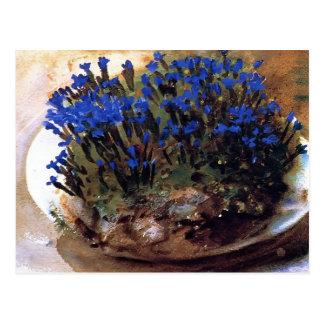 Cartão Postal Genciana do azul de Sargent- do cantor de John