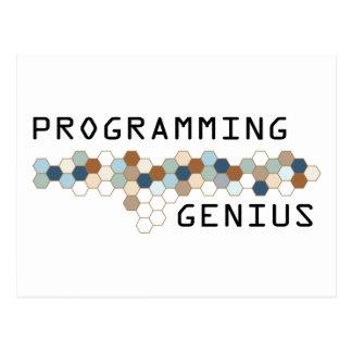 Cartão Postal Gênio de programação