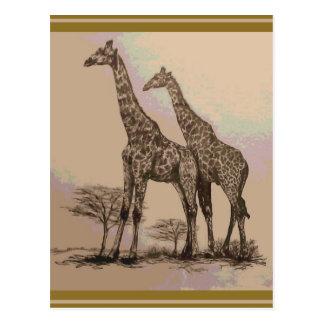 Cartão Postal Girafas africanos retros raros no Sepia & nos