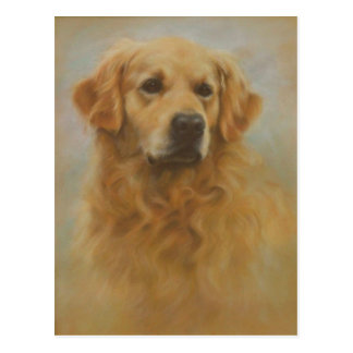 Cartão Postal Golden retriever