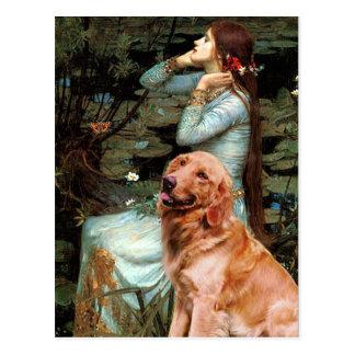 Cartão Postal Golden retriever 1 - Ophelia assentou