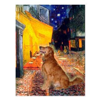Cartão Postal Golden retriever 3 - Café do terraço