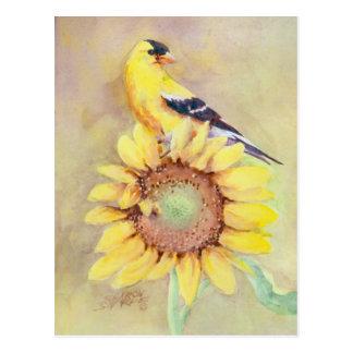 Cartão Postal GOLDFINCH E GIRASSOL por SHARON SHARPE
