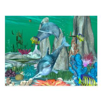 Cartão Postal Golfinhos de jogo engraçados com outros peixes