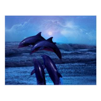 Cartão Postal Golfinhos que jogam no oceano