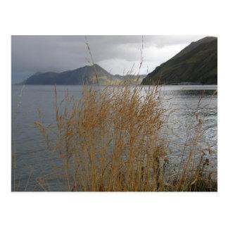 Cartão Postal Grama do outono pela baía de Illiuliuk