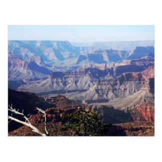 Cartão Postal Grand Canyon - borda sul