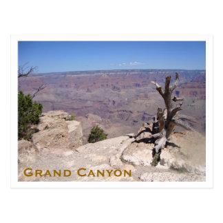 Cartão Postal Grand Canyon, borda sul