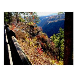Cartão Postal Grand Canyon de Pensilvânia - ponto de Colton